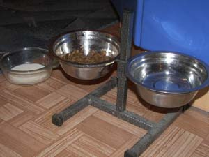 Столовая для собаки